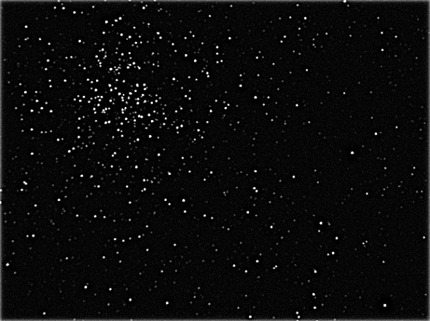 Open cluster M37 in Auriga