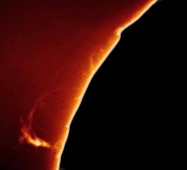 Loop prominence in Calcium K
